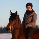Dickes Pony - Sonnenuntergang_08