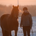 Dickes Pony - Sonnenuntergang_20